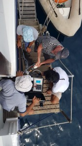 Citizen science on Phinisi boat of SeaTrek - Copyright: SeaTrek Sailing Adventures