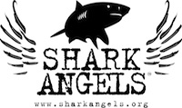 Shark-Angels-Logo