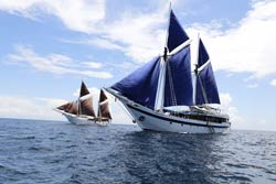 SeaTreak Sailing Adventures Pinisi Schooner